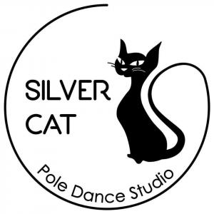 Pole Dance Studio Silver Cat